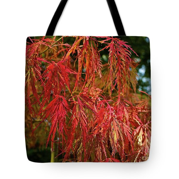 Japanese Maple Tote Bag by Linda Bianic