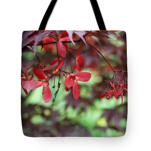 Tote Bag featuring the photograph Japanese Maple Tree by Eva Kaufman