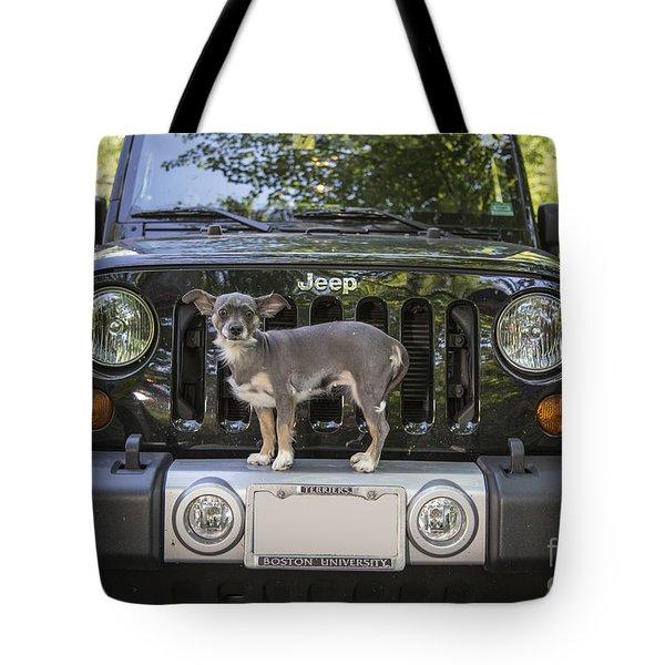 Jeep Dog Tote Bag by Edward Fielding