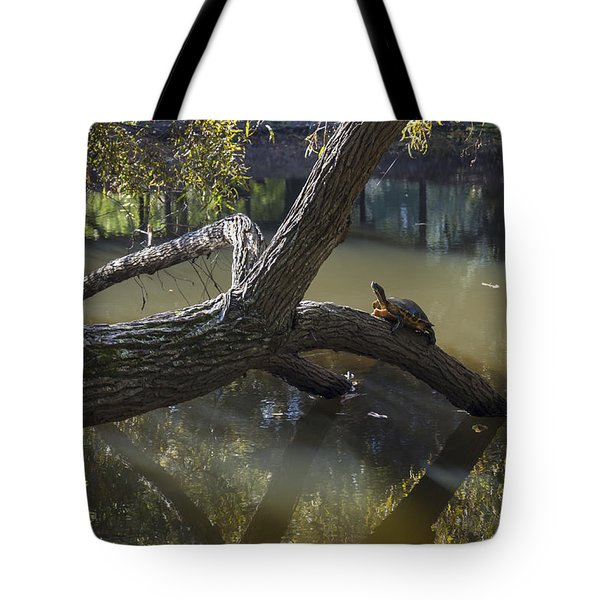 Jeffries Creek Fallen Log With A Turtle Tote Bag
