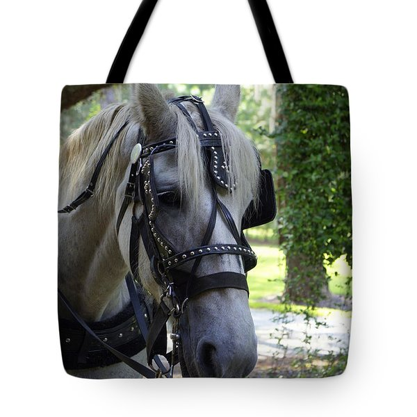 Jekyll Horse Tote Bag by Laurie Perry