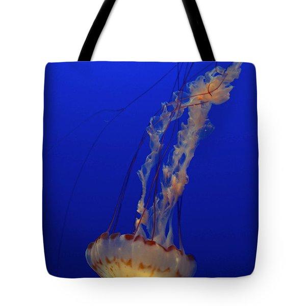 Jelly Tote Bag by Jacklyn Duryea Fraizer