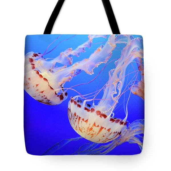 Jellyfish 9 Tote Bag by Bob Christopher