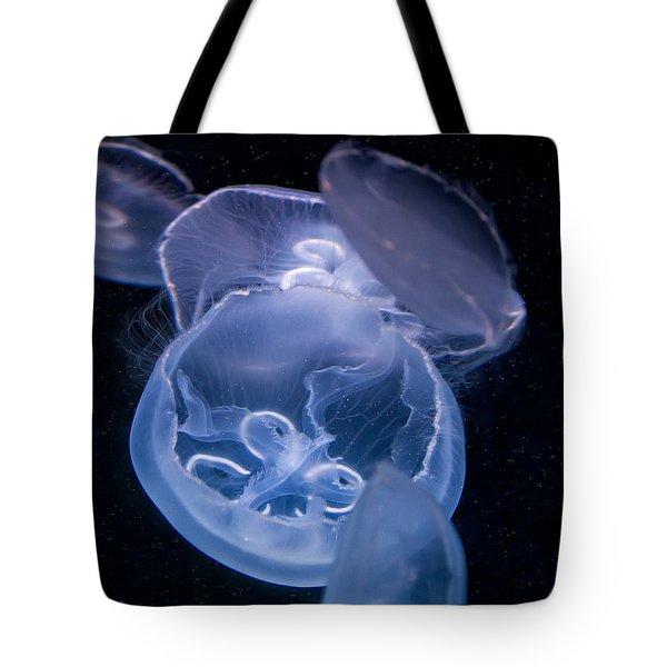 Jellyfish Tote Bag by Tim Stanley