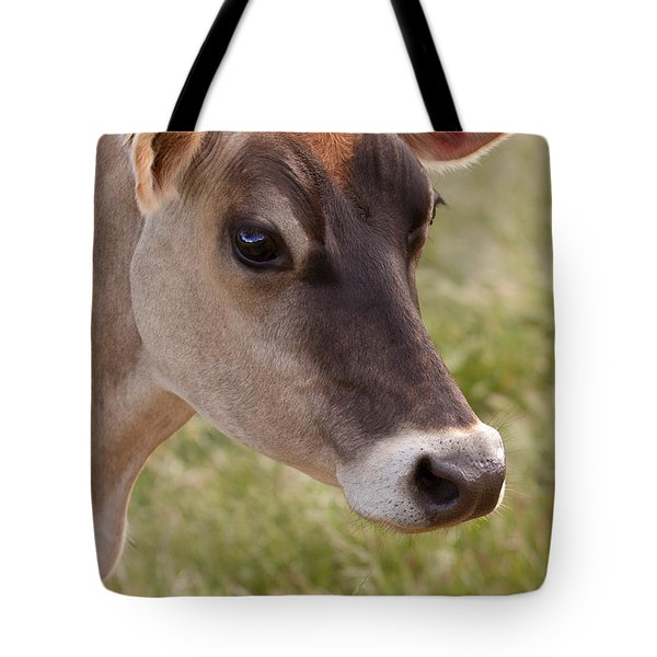 Jersey Cow Portrait Tote Bag