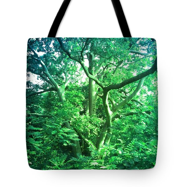 Tote Bag featuring the photograph Jersey Tree by Denise Tomasura