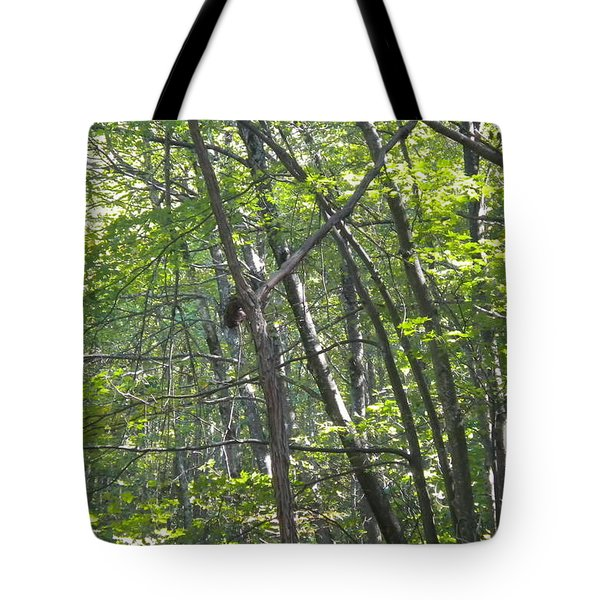 Tote Bag featuring the photograph Jesus On The Cross by Diannah Lynch