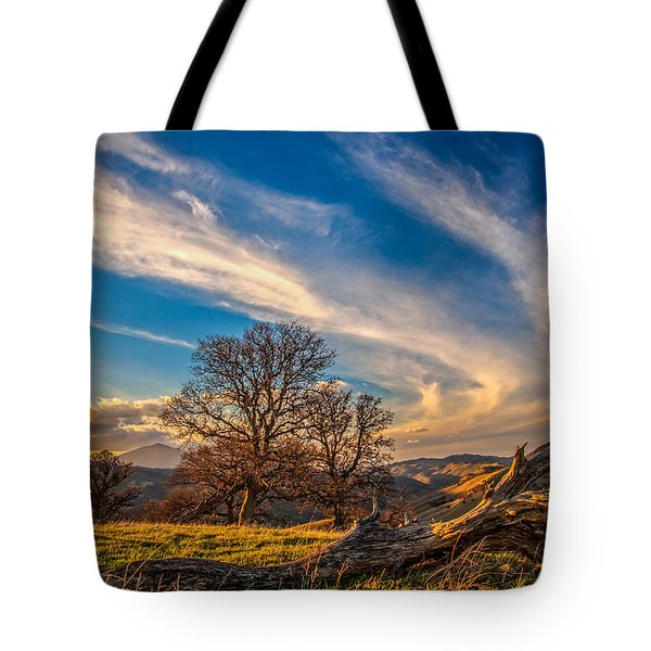 Jet Stream Tote Bag by Marc Crumpler