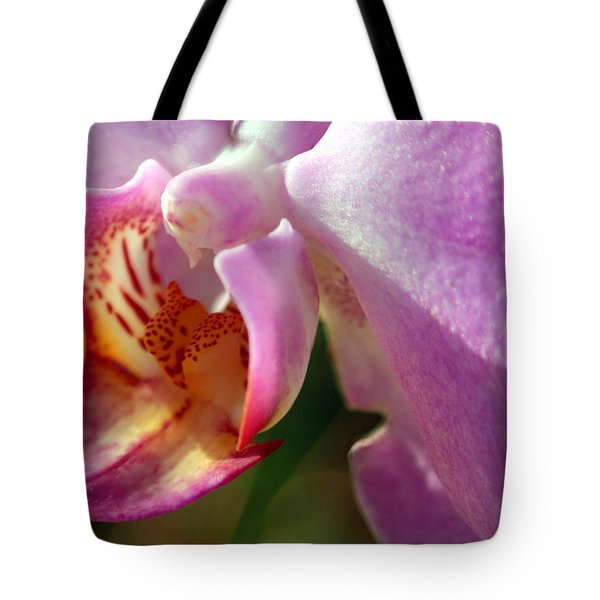 Tote Bag featuring the photograph Jewel by Greg Allore