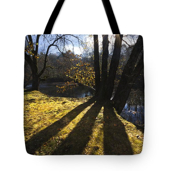 Jewel In The Trees Tote Bag by Debra and Dave Vanderlaan