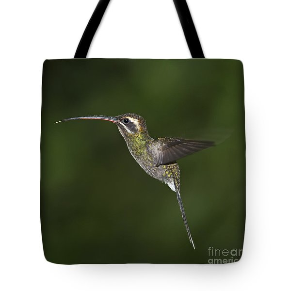 Jewel On Wings.. Tote Bag by Nina Stavlund