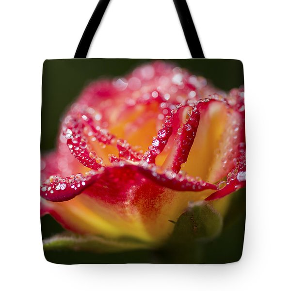 Tote Bag featuring the photograph Jewels by Priya Ghose