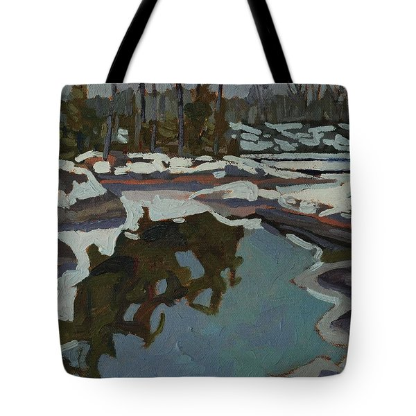 Jim Day Reflections Tote Bag by Phil Chadwick