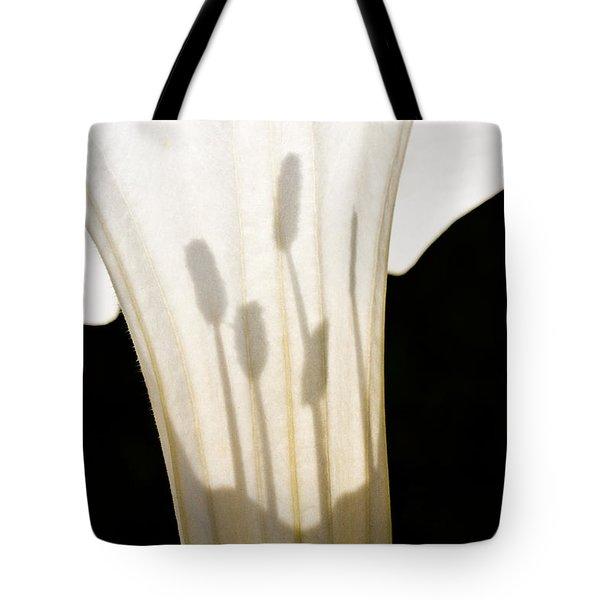 Jimsonweed Chiaroscuro Tote Bag