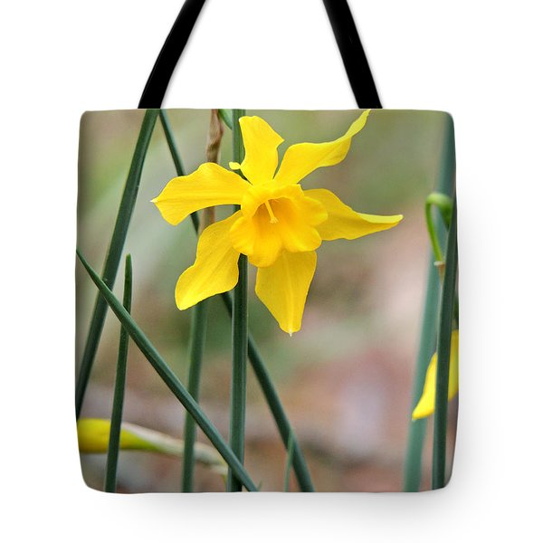 Tote Bag featuring the photograph Johnny-jump-up by Kim Pate