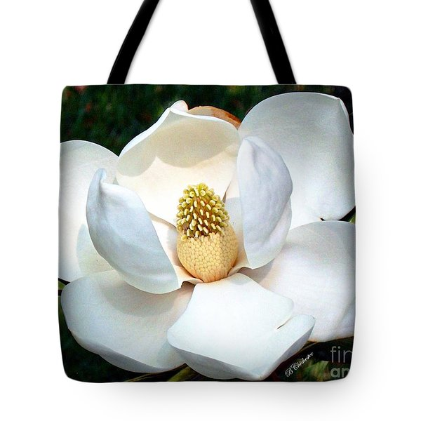 Tote Bag featuring the photograph John's Magnolia by Barbara Chichester