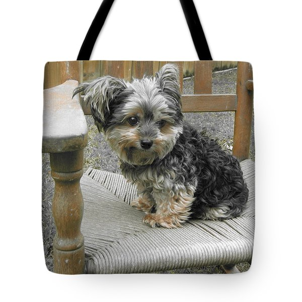 Jolie II Tote Bag by Beth Vincent