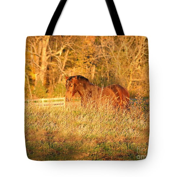 Tote Bag featuring the photograph Jonathan by Carol Lynn Coronios