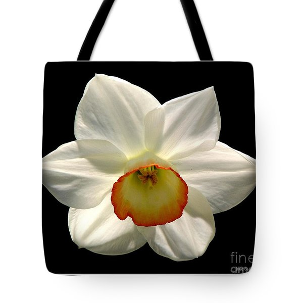 Tote Bag featuring the photograph Jonquil 1 by Rose Santuci-Sofranko