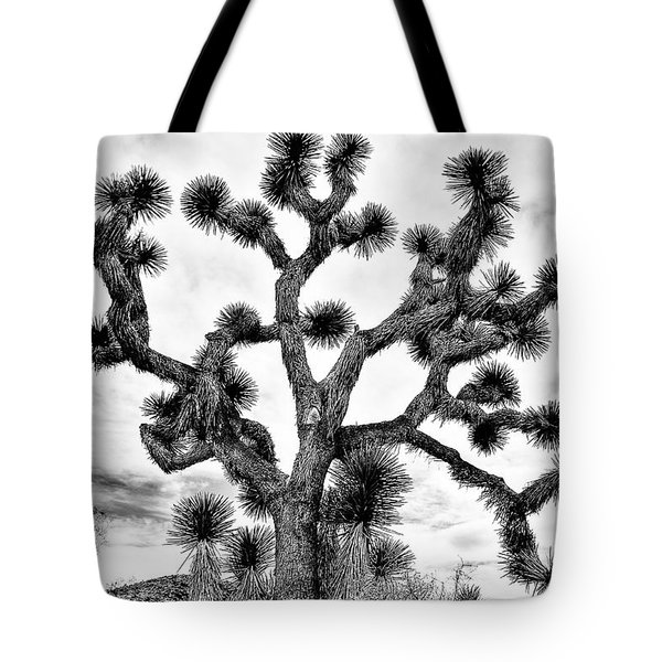 Tote Bag featuring the photograph Joshua Black And White by Benjamin Yeager
