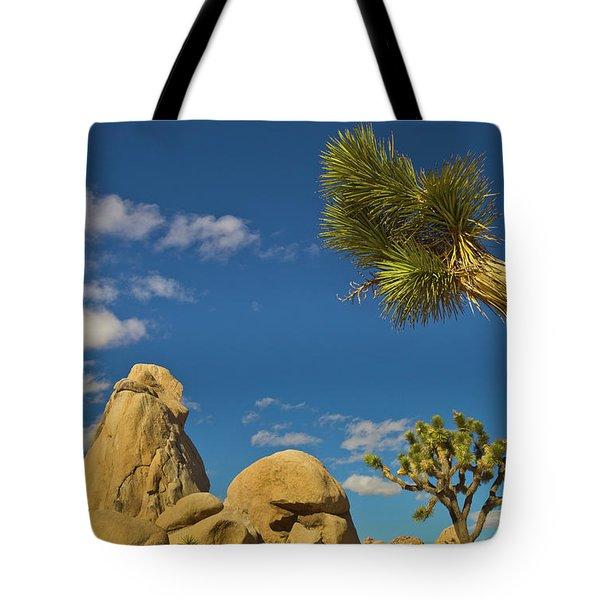 Joshua Tree Rocks And Sky Tote Bag
