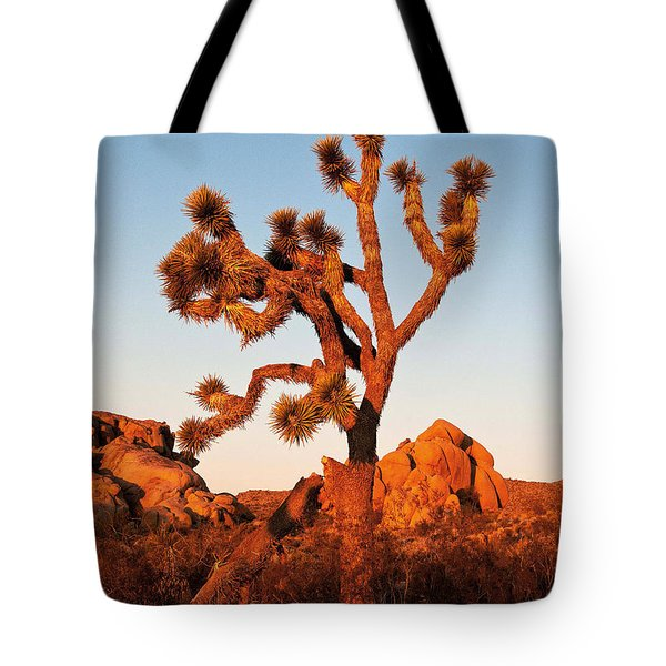 Tote Bag featuring the photograph Joshua Tree At Sunset by Mae Wertz