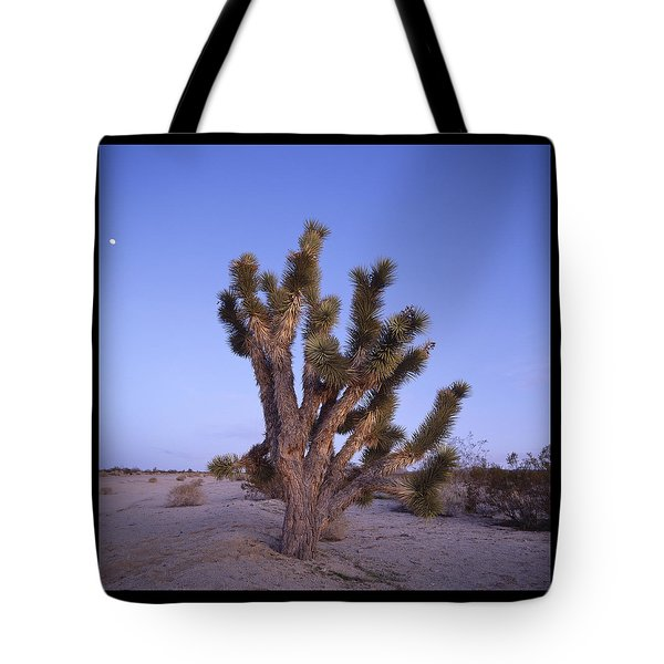 Solitude Of The Joshua Tree Tote Bag by Shaun Higson
