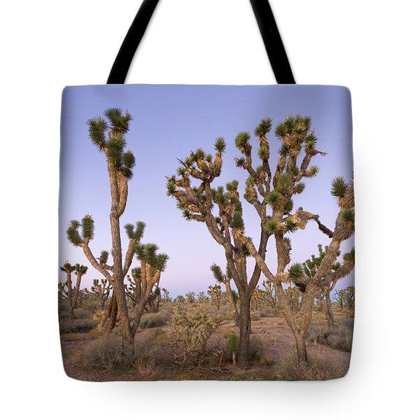 Joshua Trees Nevada Tote Bag