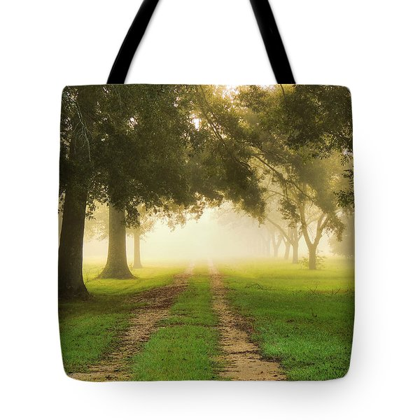 Journey Into Fall Tote Bag by Charlotte Schafer