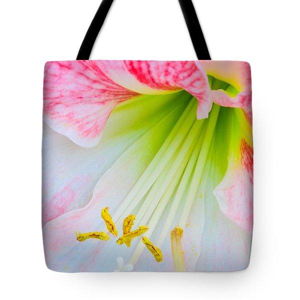 Joy Tote Bag by David Lawson