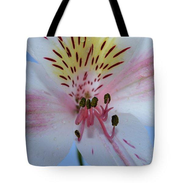 Joy Of Amaryllis Tote Bag