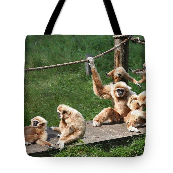 Joyful Monkey Family Tote Bag