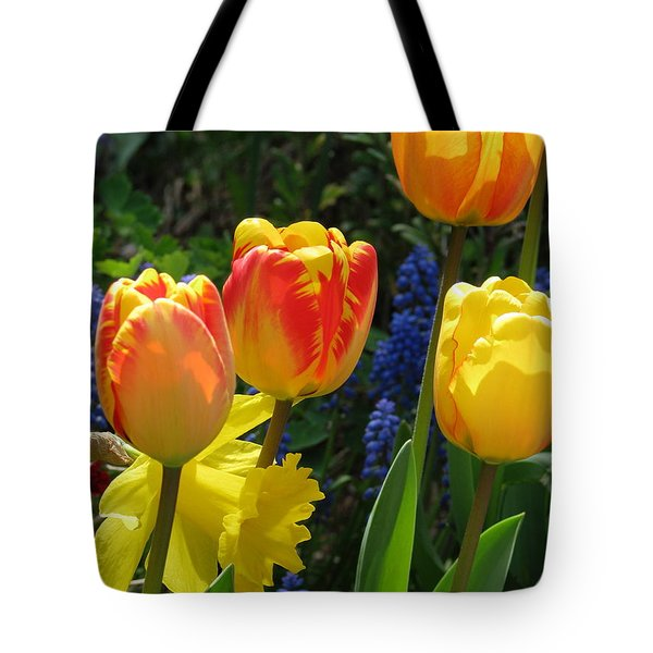 Jubilance Tote Bag by Rory Sagner