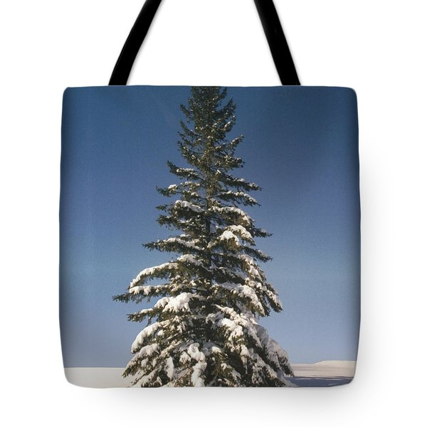 Judge's Christmas Tote Bag