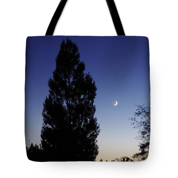 Julian Night Sky 2013 A Tote Bag