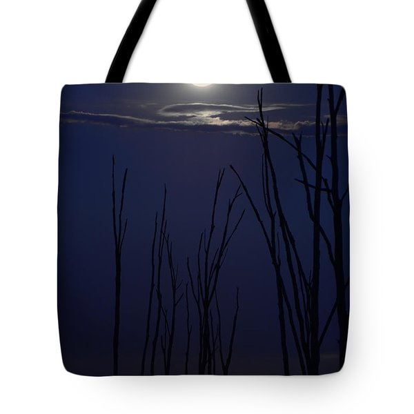 July 2014 Super Moon Tote Bag
