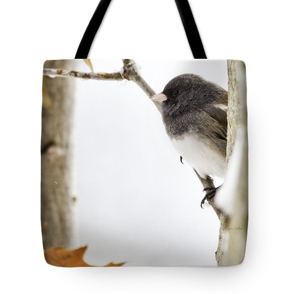 Junco And Oak Tote Bag