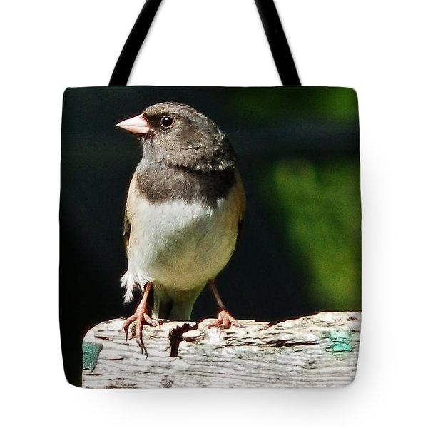 Junco Simplicity Tote Bag