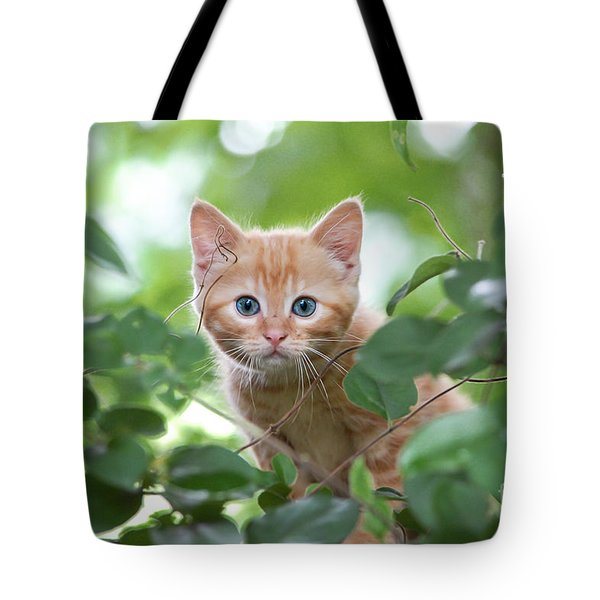 Jungle Kitty Tote Bag by Debbie Green