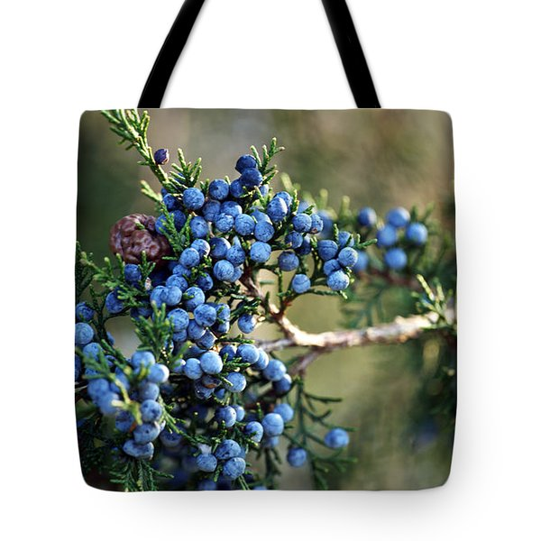 Juniper Berries Tote Bag