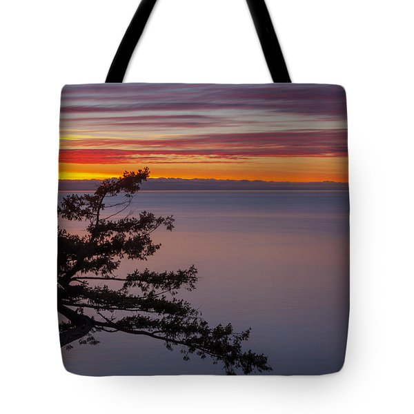 Juniper Point Tote Bag