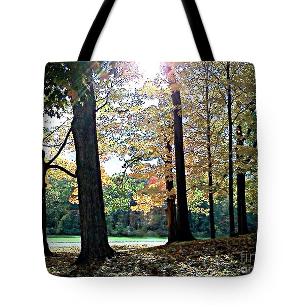 Tote Bag featuring the photograph Just A Glimpse Of Sunlight by Rita Brown