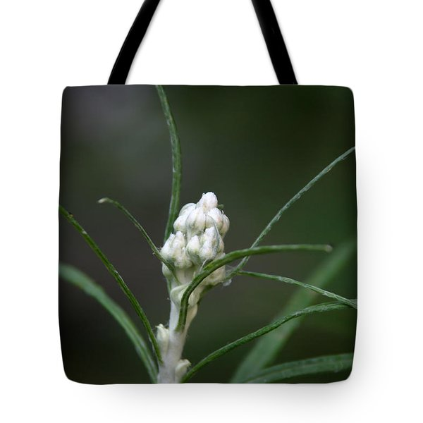 Tote Bag featuring the photograph Just Budding by Denyse Duhaime
