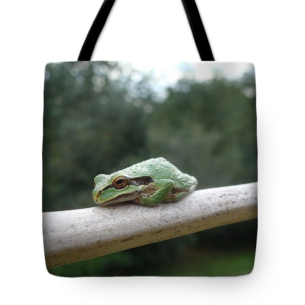 Tote Bag featuring the photograph Just Chillin' by Cheryl Hoyle