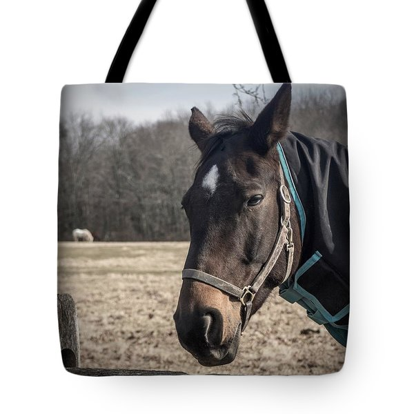 Just Chillin Tote Bag by Photographic Arts And Design Studio