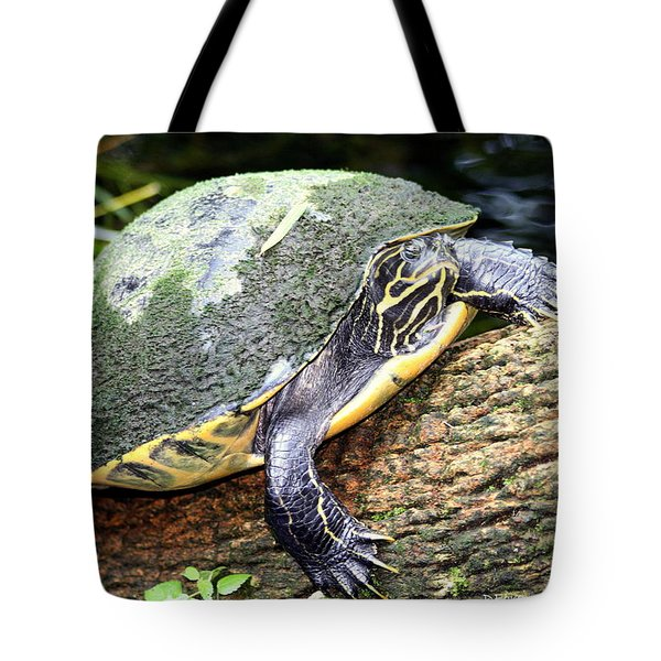 Tote Bag featuring the photograph Just Chilling by Debra Forand
