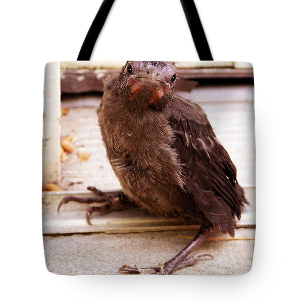 Just Dropped By Tote Bag by John Lautermilch