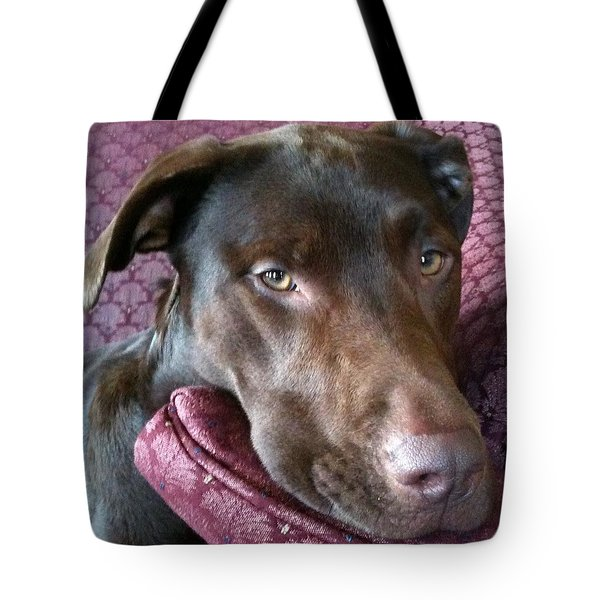 Just Five More Minutes Tote Bag by Debbie Finley