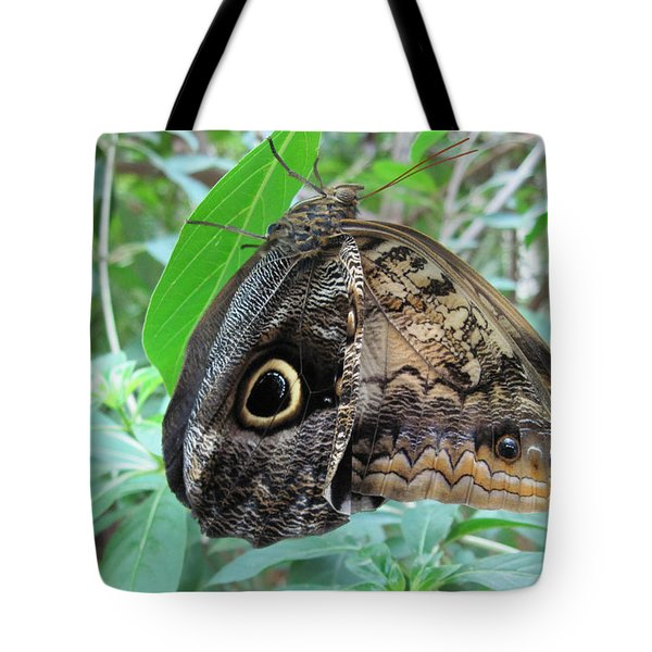 Tote Bag featuring the photograph Just Hanging Around by Mary Bedy