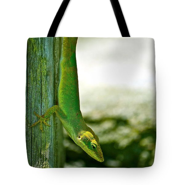 Just Hanging... Tote Bag by Lehua Pekelo-Stearns
